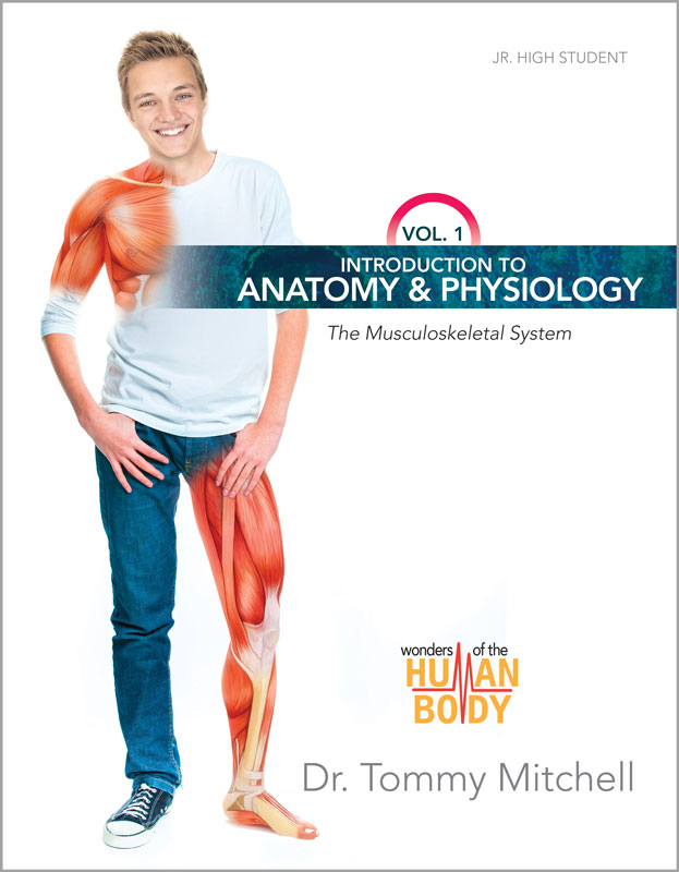 Introduction to Anatomy & Physiology (the Musculoskeletal System ...