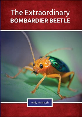 Best of British: The Extraordinary Bombardier Beetle