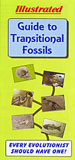 Illustrated Guide to Transitional Fossils