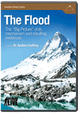 Flood: The Big Picture (Geology DVD)